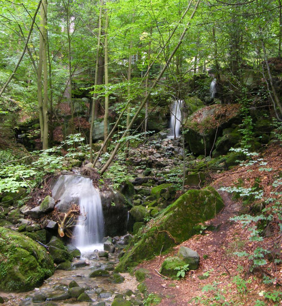 Wodospady_Pośny,_Góry_Stołowe.jpeg