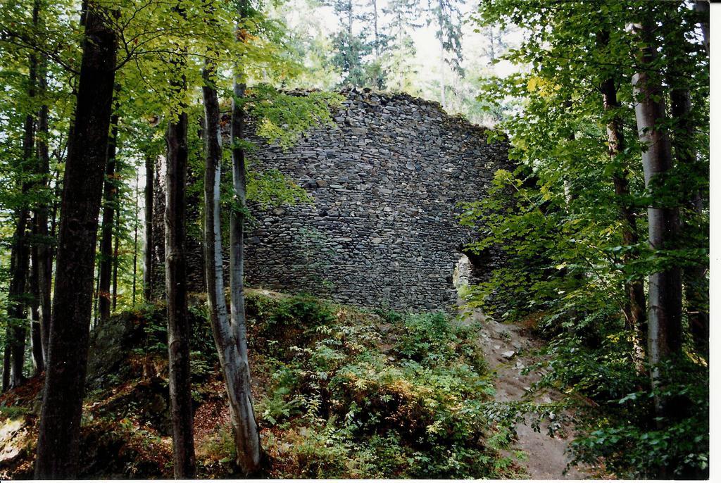 Ruiny Zamku Szczerba.jpeg