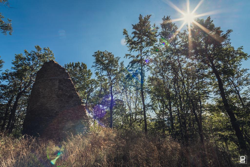 Ruiny Zamku Homole.jpeg
