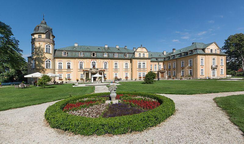 Pałac Żelazno.jpeg