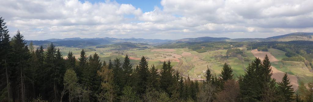 Widok z Włodzickiej Góry.jpeg